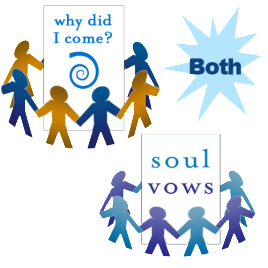 Soul Vows and Why Did I Come?<br />LIVE Telecourses<br />$486.00