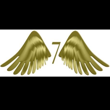 angels7
