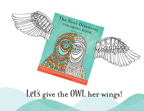 owl-wings-SDCB-rectangle