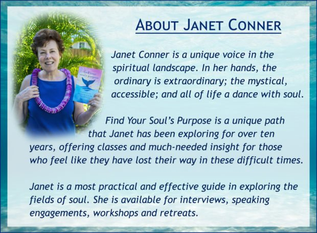 Janet Conner is a unique voice in the spiritual landscape. In her hands, the ordinary is extraordinary; the mystical, accessible; and all of life a dance with soul. Find Your Soul Purpose is a unique path that Janet has been exploring for over ten years, offering classes and much-needed insight for those who feel like they have lost their way in these difficult times. Janet is a most practical and effective guide in exploring the fields of soul. She is available for interviews, speaking engagements, workshops and retreats.