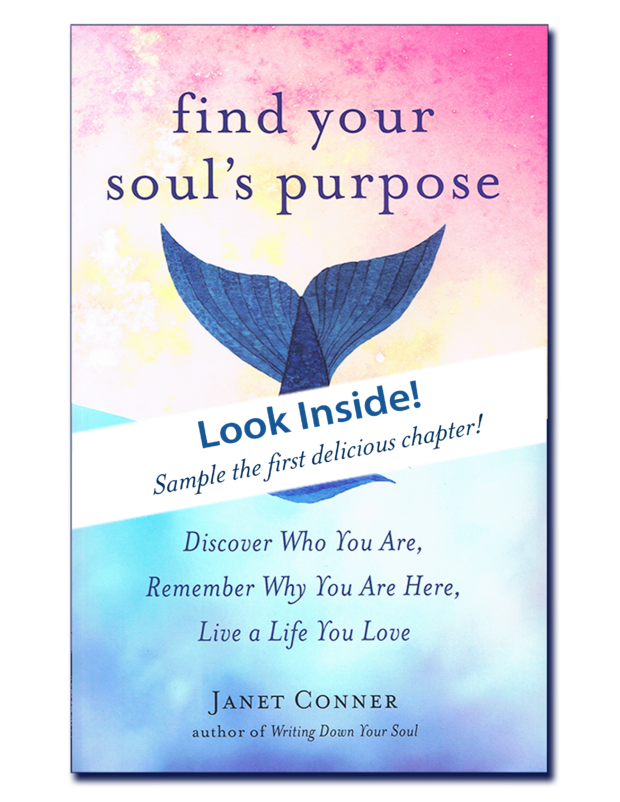 Soul Purpose Look Inside Cover